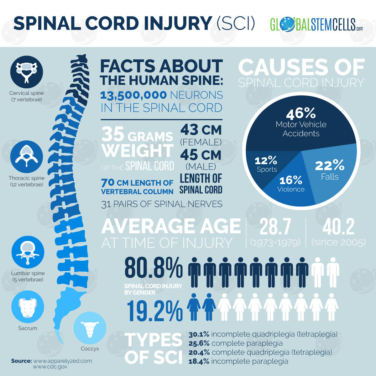 Spinal Cord Injury - Fact Sheet | Global Stem Cells