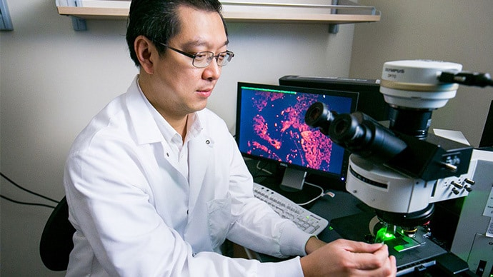 New Study in Singapore to Test Stem Cells for Liver Disease Treatment